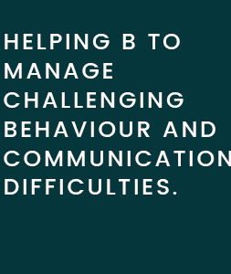 Case Study 2: Helping B to Manage Communication Difficulties.